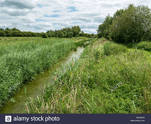 the-mustdyke-a-medieval-fenland-drainage-dyke-flag-fen-peterborough-cambridgeshire-england-uk-W2AKDG