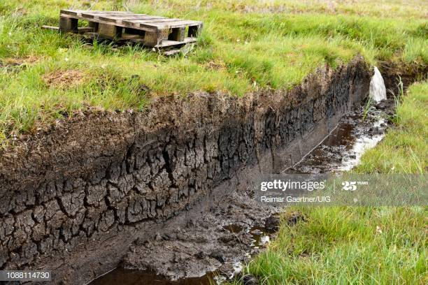 peat trench